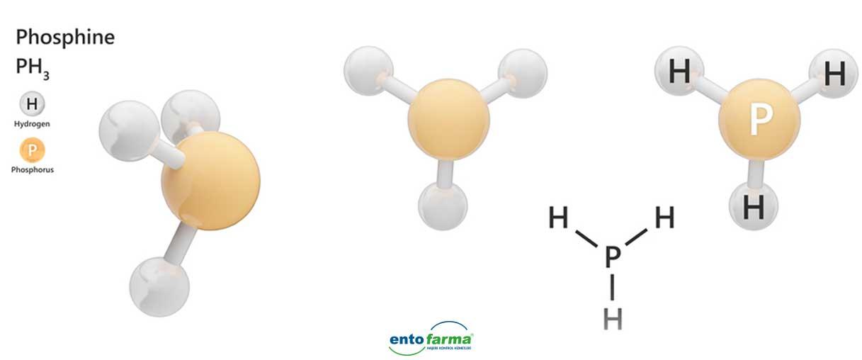 magnezyum fosfit